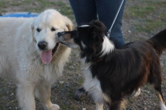 Casper et Charly