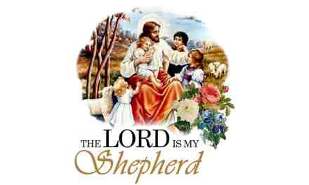 Understanding David's Wisdom The Lord Is My Shepherd