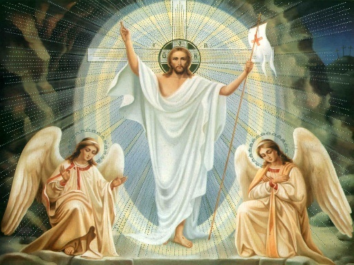 """Résultat de recherche d'images pour """"solennité Christ Roi"""""""