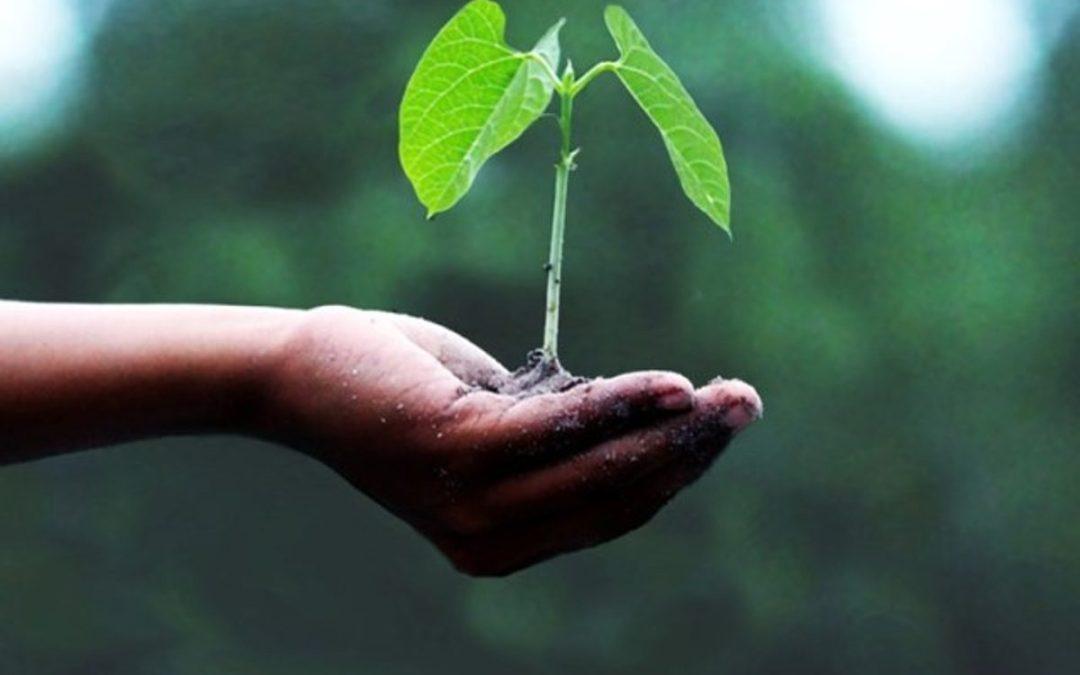 Transizione ecologica, non solo il ministero
