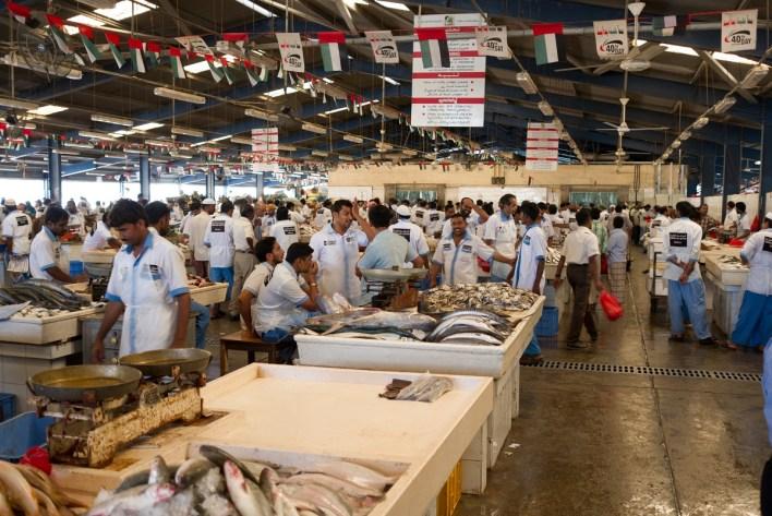 إحدى إسواق السمك العربية: المطلوب زيادتها