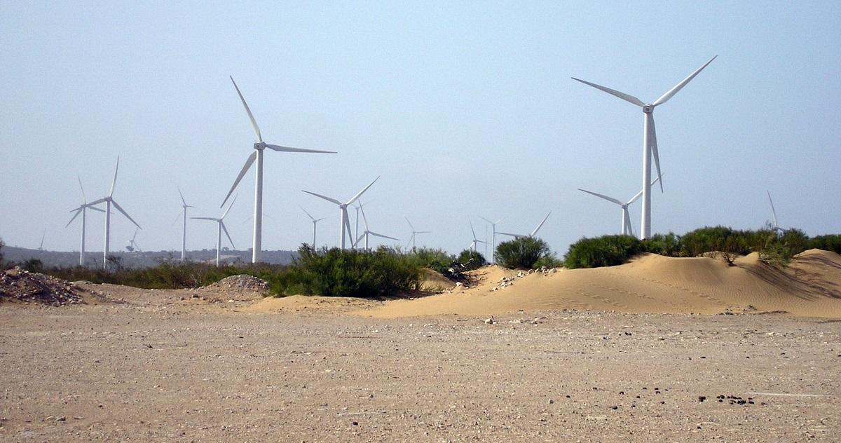 مزرعة الرياح في طرفاية: أكبر مزرعة من نوعها في أفريقيا