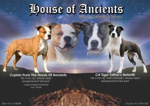 House of Ancients dek aankondiging Phoenix sully