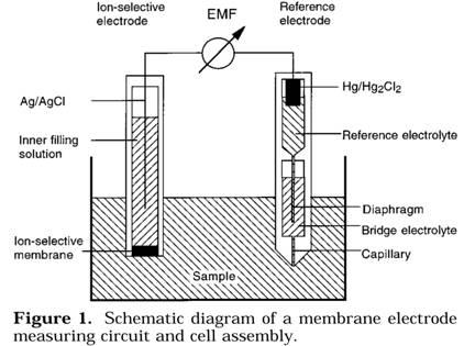 Ion-selective electrodes; Electrodes, Ion-Selective