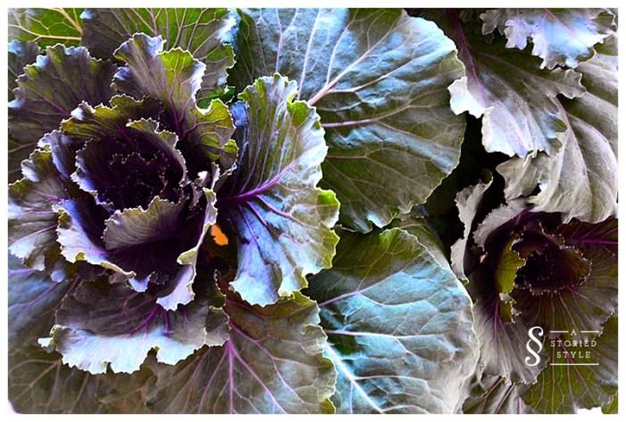 kale as centerpiece