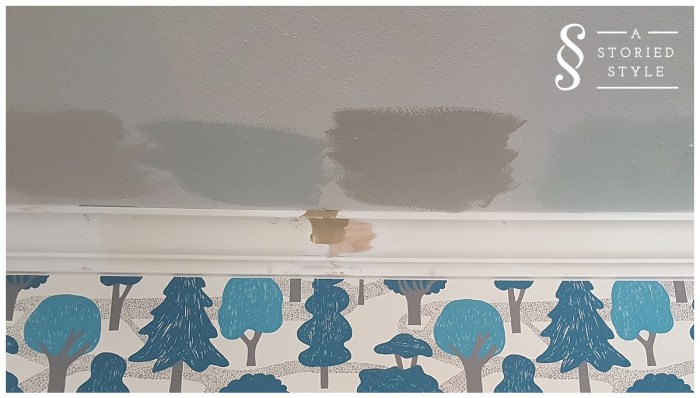 ceiling paint options