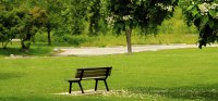Things To Do: New Orleans City Park