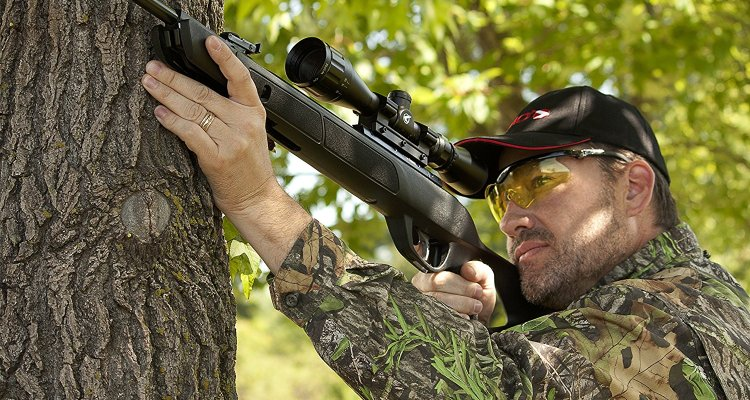 best gamo rifle reviews guide 2019 a straight arrow