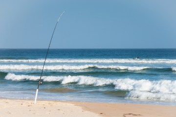 best surf fishing reels review