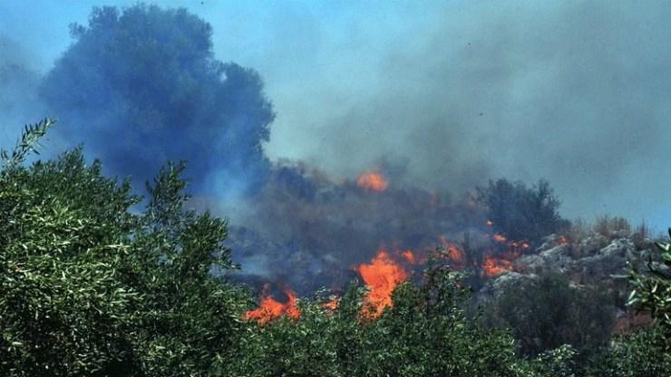 Πυρκαγιά σε δασική έκταση στην Ξάνθη