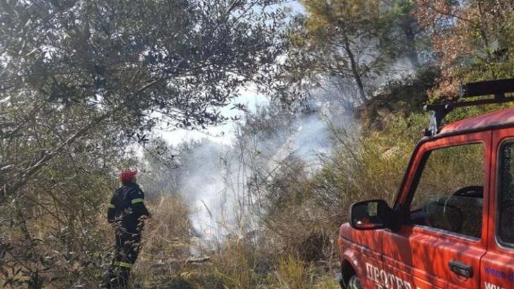 Ηράκλειο: Άνδρας έβαλε φωτιά σε χόρτα και συνελήφθη για εμπρησμό