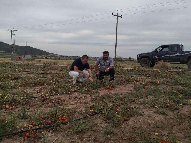 Αυτοψία Κόκκαλη στις χαλαζόπληκτες αγροτικές περιοχές των Φαρσάλων