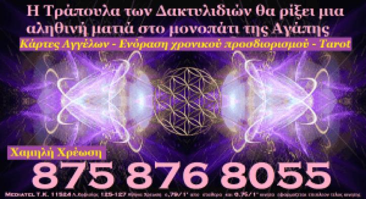 zodia-zwdia-9988