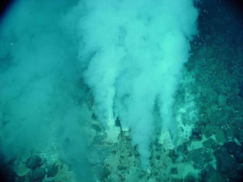 ¿Cómo apareció la vida en el fondo marino?