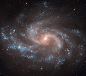 La galaxia NGC 5584, fotografiada por el telescopio Hubble. Crédito: NASA