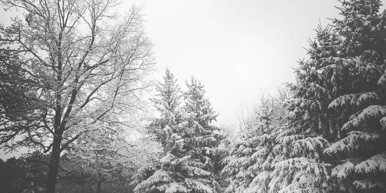 La ciencia del solsticio de invierno
