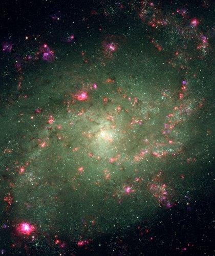 De neonlichten van M33