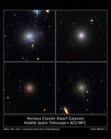 4 dwergstelsels in de kern van de Perseuscluster