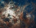 Hubble fotografeert spectaculair stervormingsgebied in de Tarantulanevel