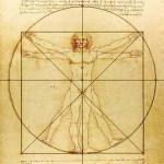 Hoe vaak reageren deeltjes donkere materie op een menselijk lichaam?