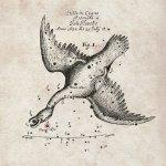 APEX-waarnemingen aan botsende sterren helpen het mysterie van Nova Vulpeculae 1670 ontrafelen