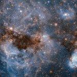 Zomergalerij: N159, een stellaire kraamkamer