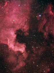 North America Nebula