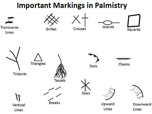 Palmistry for dummies… read your own palm!