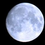 Astrología en Miami para todos