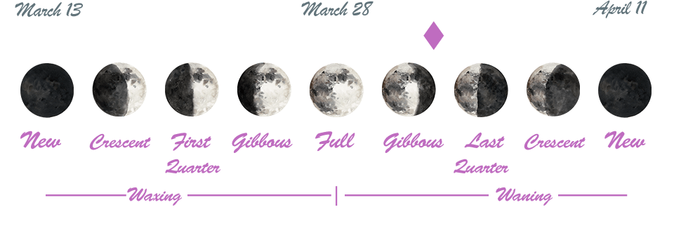 Today's date is marked with a diamond along the lunar phases images.