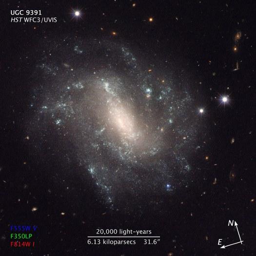 UGC9391