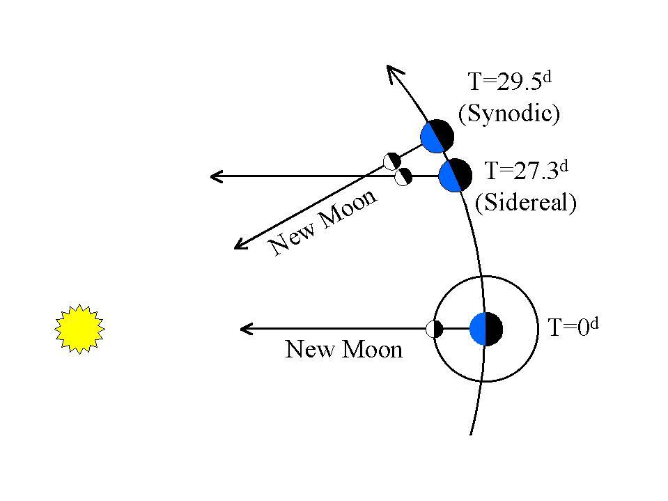 Lunar Sidereal vs. Synodic