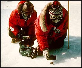 finding meteorites in Antarctica