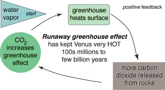 runaway greenhouse positive feedback