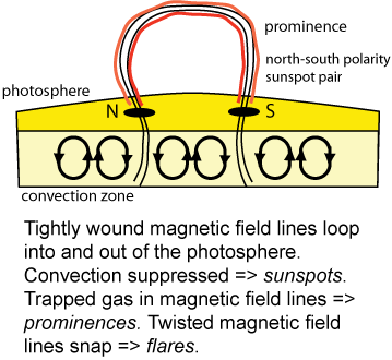Sunspot - magnetic field connection