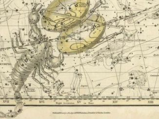 Star Constellation Facts: Scorpius, the Scorpion
