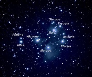 Pleiades Star Cluster In Taurus