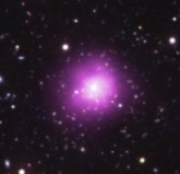 The Phoenix Cluster