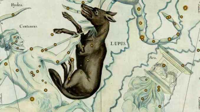 Star Constellation Facts: Lupus