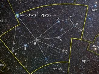 Pavo Constellation Stars