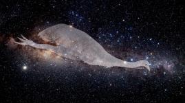 Emu Nebula along the Milky way