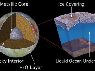 Is There Life in Europa's Subsurface Ocean?