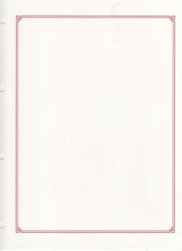 FA013 - Fiches Album - Fiches Vierges - (Par Paquet de 10 Fiches)