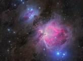 The Orion Nebula by Steve Milne