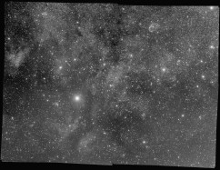 Blue channel of Steve Milne's multi-channel mosaic of the Sadr region in the constellation Cygnus. Corrected with LNC & MBB.