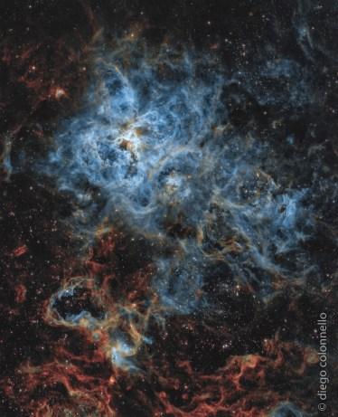 The Tarantula Nebula by Diego Colonnello