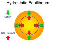 A main sequence star is in hydrostatic equilibrium. The gravitational force of the whole star is in equilibrium with the gas pressure created by nuclear fusion of hydrogen to helium, in it's core.