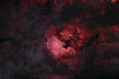 NGC 7000 starless