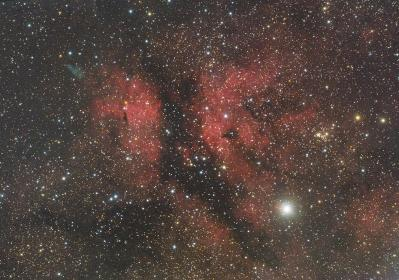 Ic1318 color