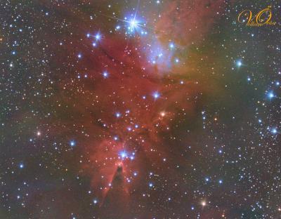 Cone Nebula Mid